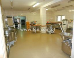 Fabryka, zakład na sprzedaż, Drzewce-Kolonia, 1500 m²