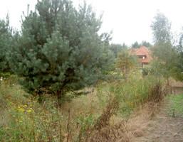 Działka na sprzedaż, Parcela-Obory Grzybowska, 1303 m²