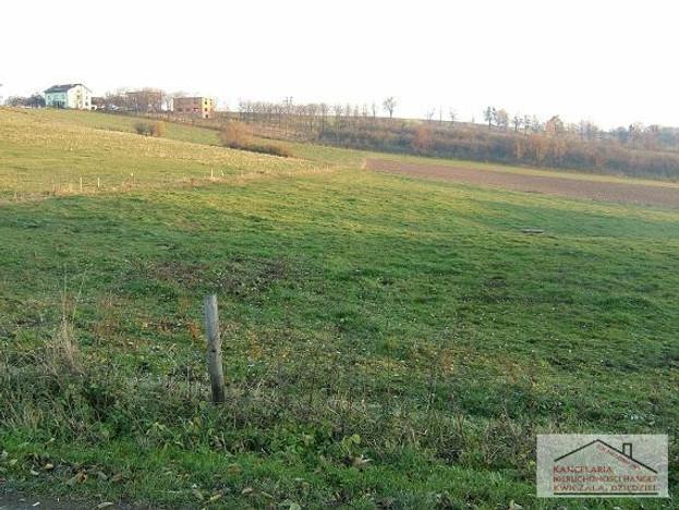Działka na sprzedaż, Cieszyn Rolna, 10042 m² | Morizon.pl | 2741