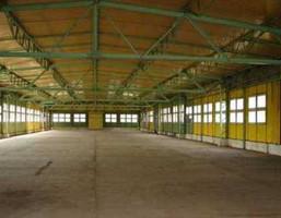 Magazyn na sprzedaż, Długa Kościelna, 1500 m²