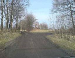 Działka na sprzedaż, Żanęcin Pęclińska, 15500 m²