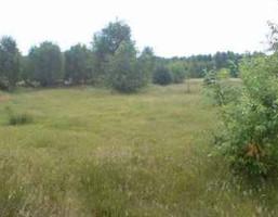 Działka na sprzedaż, Wola Ducka, 4800 m²