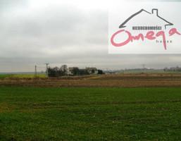 Działka na sprzedaż, Gołuchowice, 8203 m²