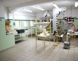 Fabryka, zakład na sprzedaż, Barnisław, 2000 m²