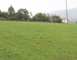 Działka na sprzedaż, Pogorzany, 1200 m²