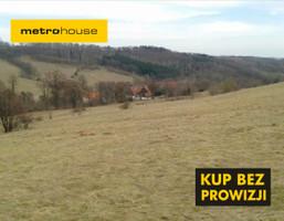 Działka na sprzedaż, Krajanów, 51100 m²