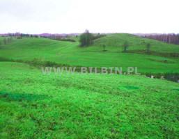 Działka na sprzedaż, Jegliniszki, 53900 m²