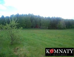 Działka na sprzedaż, Nowa Wieś Przywidzka Jagodowa, 11600 m²