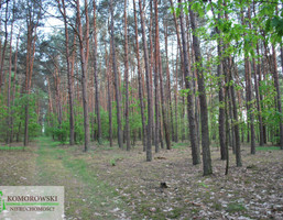 Działka na sprzedaż, Rumoka, 21078 m²