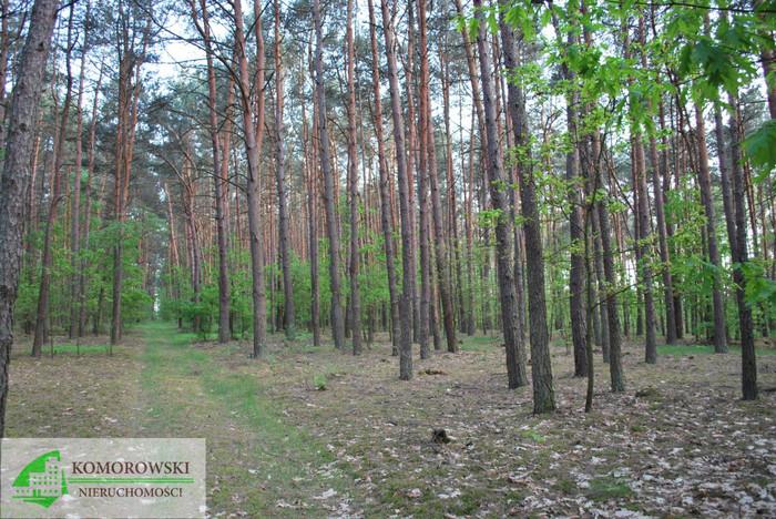 Działka na sprzedaż, Rumoka, 21078 m² | Morizon.pl | 4391