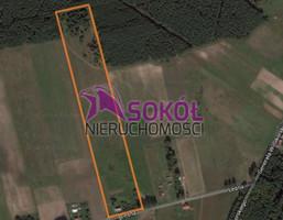Działka na sprzedaż, Wieńkowo Leśna, 63000 m²