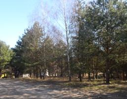 Działka na sprzedaż, Charzykowy Lazurowa, 1311 m²