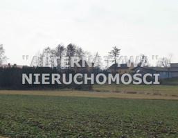 Działka na sprzedaż, Jastrzębie-Zdrój, 4600 m²
