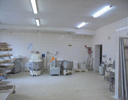 Fabryka, zakład do wynajęcia, Ziemięcice, 150 m²