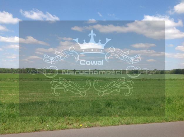 Działka na sprzedaż, Orzesze, 34240 m² | Morizon.pl | 7290