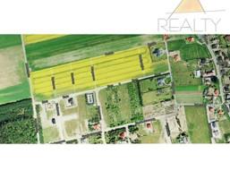 Działka na sprzedaż, Strzyżewice Balonowa, 63000 m²