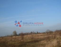 Działka na sprzedaż, Bielawa, 7500 m²