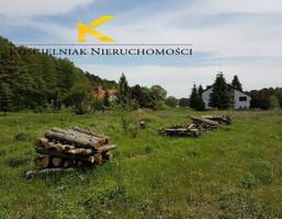 Działka na sprzedaż, Droszków, 1645 m²