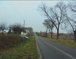 Działka na sprzedaż, Niemieryczew Wola Pekoszewska, 1200 m²