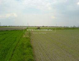 Działka na sprzedaż, Lesznowola, 9900 m²