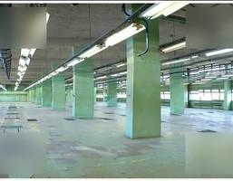 Magazyn, hala do wynajęcia, Pabianice Warszawska 44, 1200 m²