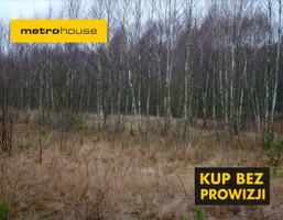 Działka na sprzedaż, Huta Dłutowska, 3700 m²