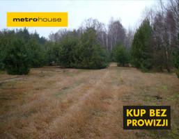 Działka na sprzedaż, Huta Dłutowska, 3600 m²