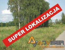 Działka na sprzedaż, Borzęcin Mały, 3000 m²