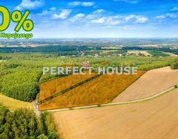 Działka na sprzedaż, Kopanka, 33031 m²