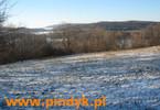 Działka na sprzedaż, Gorzanowice, 89500 m²
