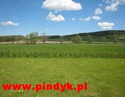 Działka na sprzedaż, Wojcieszyce, 3500 m²