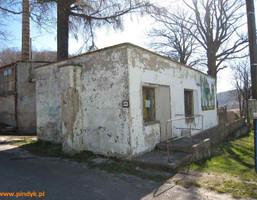 Komercyjne na sprzedaż, Leszczyniec, 400 m²
