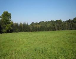 Działka na sprzedaż, Rębiszów, 10600 m²