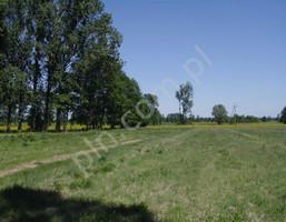 Działka na sprzedaż, Arkadia, 66000 m²
