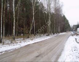 Działka na sprzedaż, Borowiny, 6163 m²