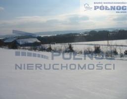 Działka na sprzedaż, Borówna, 3700 m²