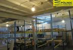 Magazyn do wynajęcia, Pabianice, 350 m²