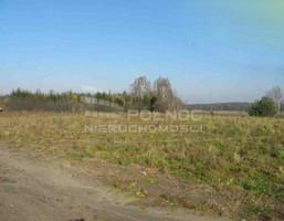Działka na sprzedaż, Katrynka, 5560 m²