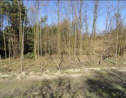 Działka na sprzedaż, Tychy Urbanowice, 9627 m²