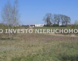 Działka na sprzedaż, Gruszczyn, 16800 m²