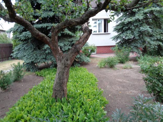 Dom na sprzedaż, Kielce Białogon, 240 m²   Morizon.pl   6756