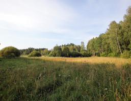 Działka na sprzedaż, Elganowo, 14100 m²