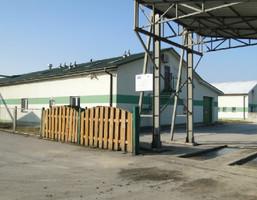 Działka na sprzedaż, Łopuszno, 7641 m²