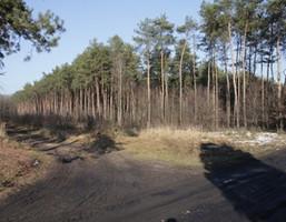 Działka na sprzedaż, Aleksandrówek, 21900 m²