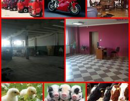 Hala na sprzedaż, Mogilno, 9677 m²