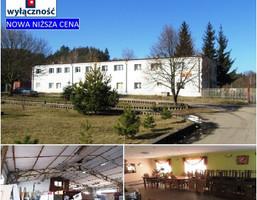 Działka na sprzedaż, Łupowo Słowackiego, 25053 m²
