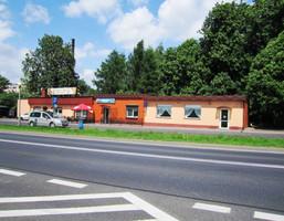 Lokal gastronomiczny na sprzedaż, Słupia pod Kępnem, 250 m²