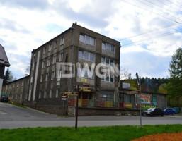 Dom na sprzedaż, Zagórze Śląskie, 1495 m²
