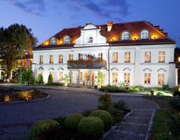 Morizon WP ogłoszenia | Komercyjne w inwestycji Hotel Pałac Czarny Las, Woźniki (gm.), 3200 m² | 1881