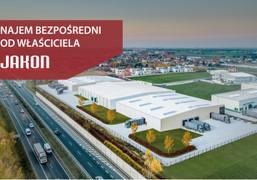 Morizon WP ogłoszenia | Nowa inwestycja - Jakon Kostrzyn Wielkopolski, Kostrzyn ul. Zbożowa, 4813 m² | 8329
